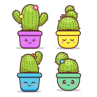 Cactus de expresión diferente lindo en maceta colorida