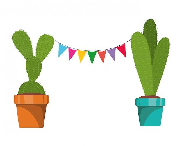 Cactus con garland colgando icono aislado