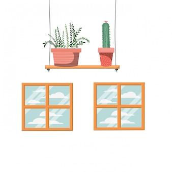 Cactus con macetas en estante