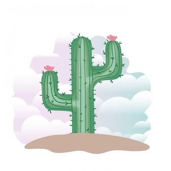 Cactus en paisaje aislado