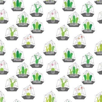 Cactus en terrarios de vidrio con patrón geométrico. ilustraciones vectoriales para el diseño de papel de regalo.
