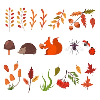 Caída de elementos decorativos. hojas de otoño, hierba, setas, animales e insectos.