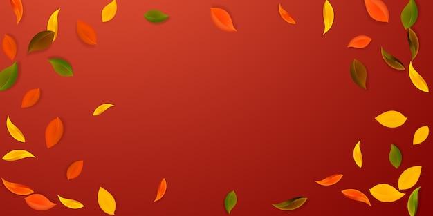 Caída de hojas de otoño. hojas limpias rojas, amarillas, verdes, marrones volando. follaje colorido de la viñeta sobre fondo rojo espléndido. preciosa venta de regreso a clases.