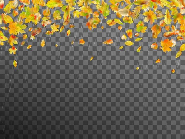 La caída de las hojas de otoño. plantilla de banner con hojas de otoño.