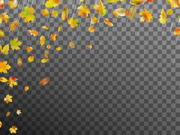 Caída de hojas de otoño.