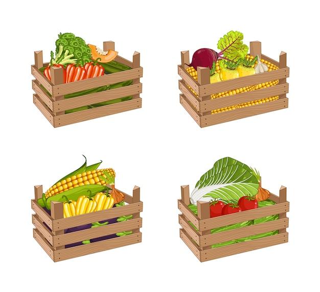 Caja de madera llena de vegetales conjunto vector aislado