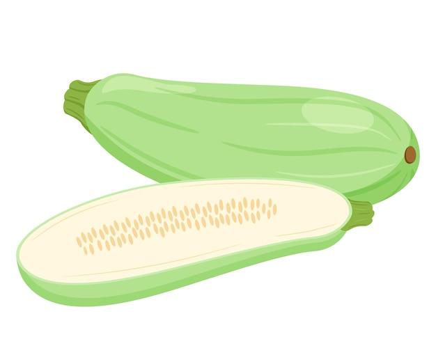 El calabacín es fresco. aplastar enteros, la mitad con semillas y cortar en cortes transversales. vegetal, ingrediente, el elemento de diseño de envases para alimentos, recetas. aislado en la ilustración de vector blanco. estilo plano