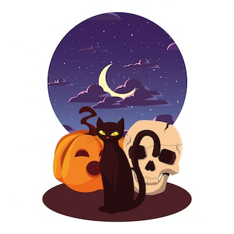 Calabaza gato feliz celebración de halloween