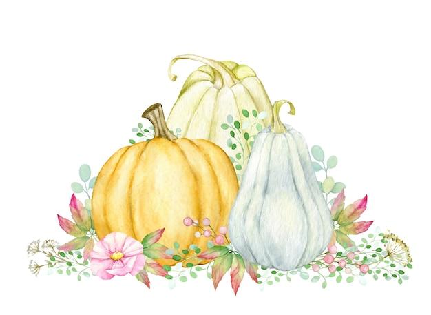 Calabazas, flores de plantas, acuarela, otoño conjunto de elementos, de acción de gracias, en estilo boho