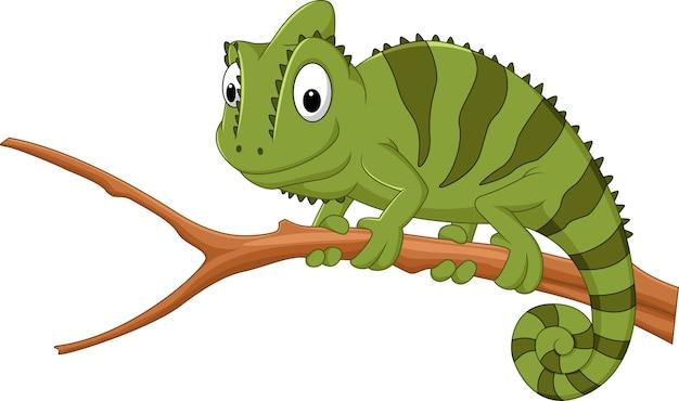 Camaleón de dibujos animados en una rama