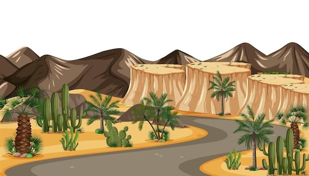 Camino del desierto hermosa luz dorada del atardecer al atardecer