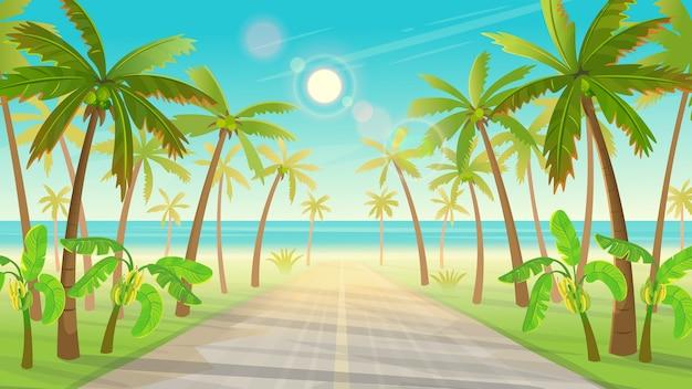 Camino sobre la isla tropical con palmeras hasta el océano. de isla tropical