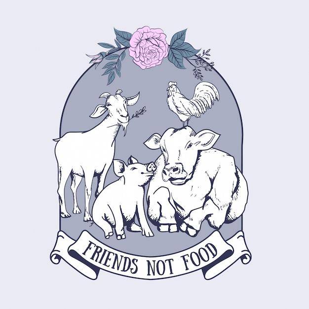 Camiseta amigo no comida