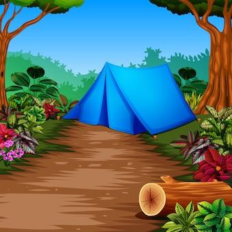 Campamento en el bosque con la hermosa vista
