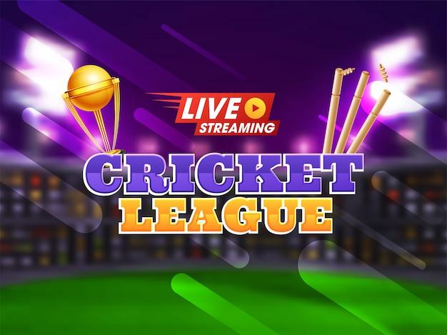 Campeonato de cricket concepto.