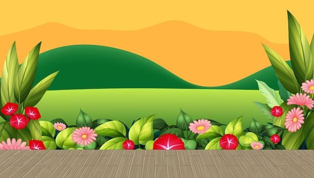 Campo de flores y hojas con fondo de montaña al atardecer