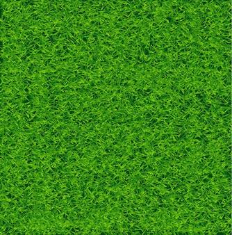 Campo de hierba de fútbol verde