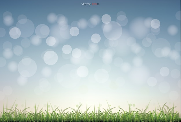 Campo de hierba verde con luz de fondo bokeh borrosa