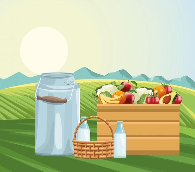 Canasta de botellas de leche de canasta agrícola y caja llena de frutas y verduras