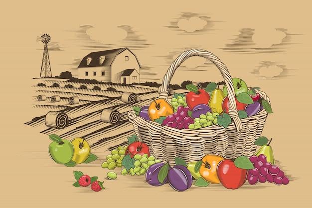 Canasta de frutas y granja