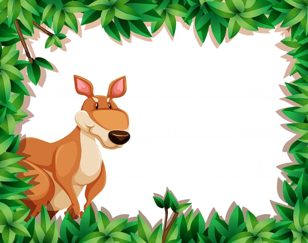 Un canguro en el marco de la naturaleza