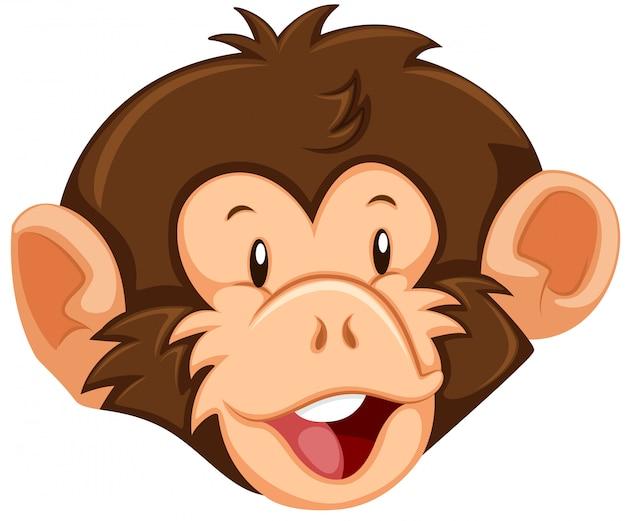 Una cara de mono sobre fondo blanco