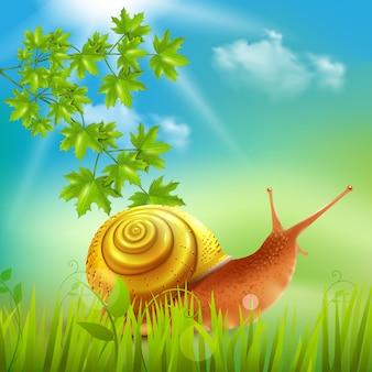 Caracol en hierba realista