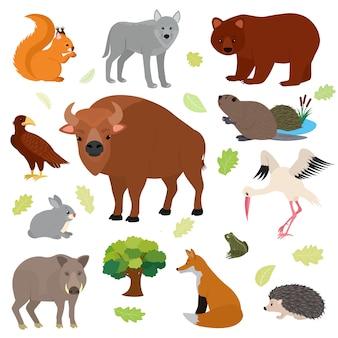Carácter animal animal en el bosque ardilla lobo oso liebre de la vida silvestre ilustración conjunto de depredador europeo jabalí zorro erizo aislado sobre fondo blanco.