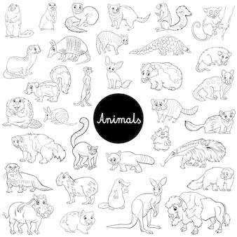 Caracteres animales mamíferos salvajes conjunto libro color