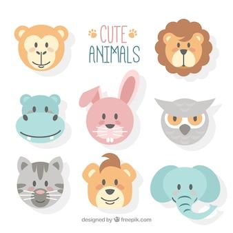 Caras de animales bonitos con diseño plano