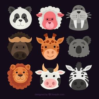 Caras sonrientes de animales con diseño plano