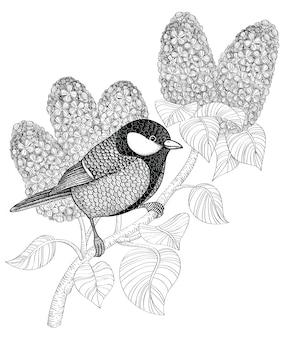 Carbonero común en rama de lila.