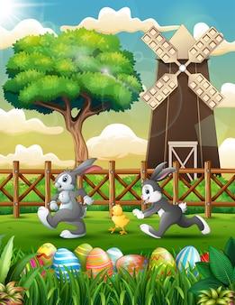 Caricatura de conejito feliz con pollito jugando en la granja