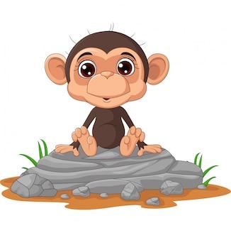 Caricatura lindo bebé mono sentado en la roca