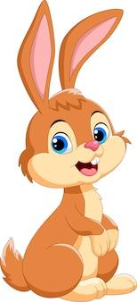 Caricatura lindo conejo