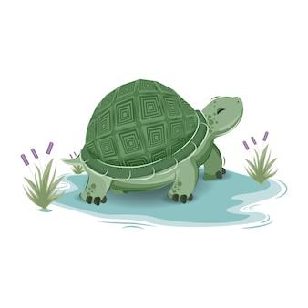 Caricatura lindo personaje de tortuga marina