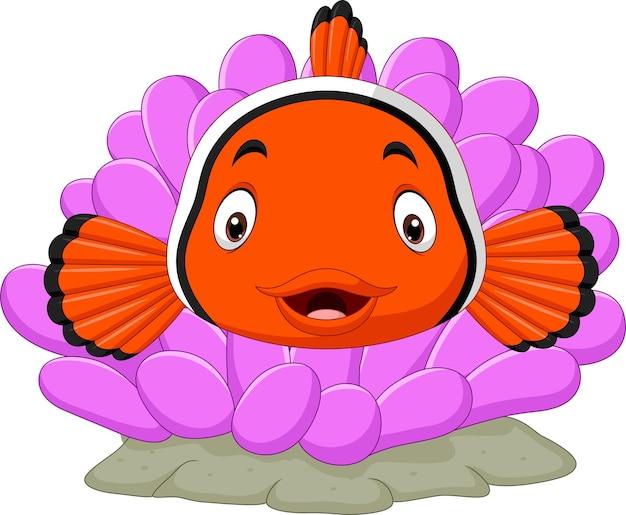 Caricatura lindo pez payaso con coral