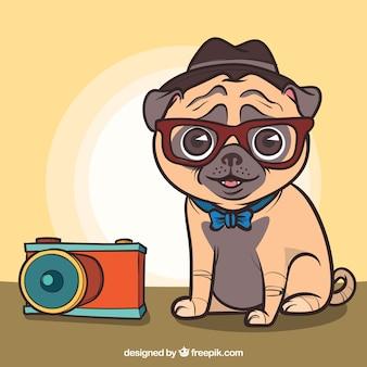 Carlino adorable con estilo de fotógrafo