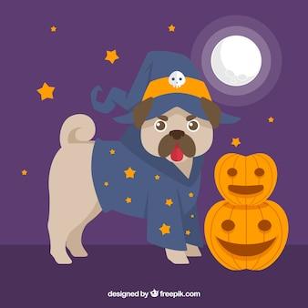 Carlino divertido con disfraz de halloween