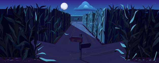 Carretera en maizal con horquilla y señales de dirección en la noche