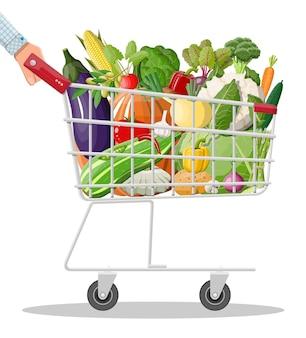 Carro de la compra de metal lleno de verduras en la mano