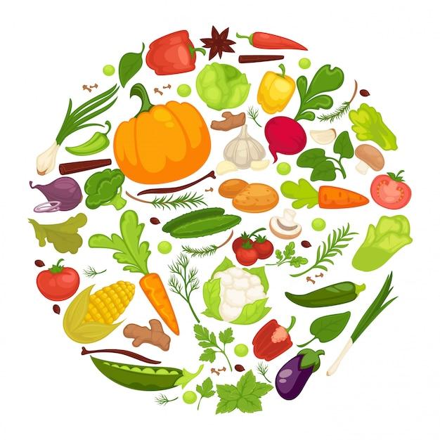 Cartel de alimentos saludables de verduras de verduras orgánicas, repollo saludable fresco y comida vegetariana.
