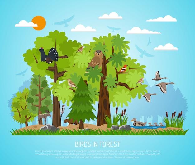 Cartel de las aves en el bosque