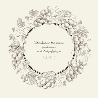 Cartel dibujado a mano de fruta abstracta con racimo de uvas de marco redondo e inscripción en la ilustración de vector de fondo gris