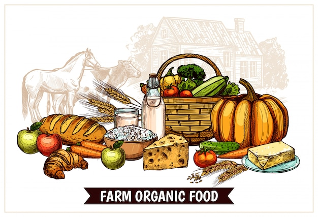 Cartel de la granja ecológica