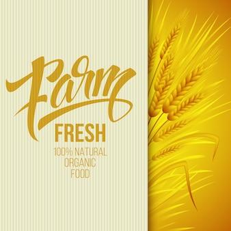 Cartel de granja fresca y espigas de trigo.