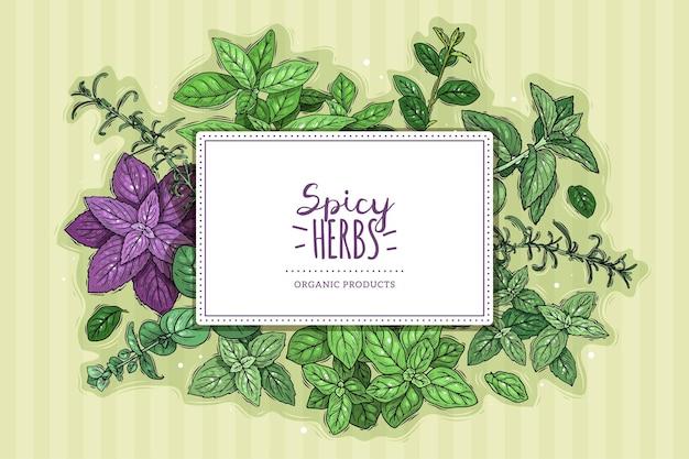 Cartel de hierbas y especias