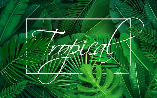 Cartel con hojas tropicales