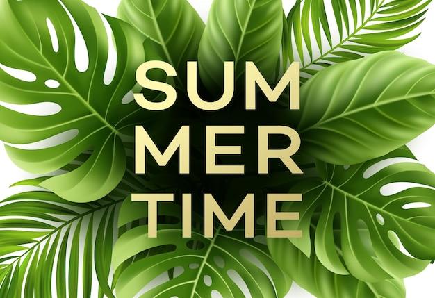 Cartel de horario de verano con hojas de palmeras tropicales.