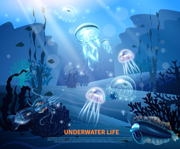 Cartel de luz de fondo de vida submarina